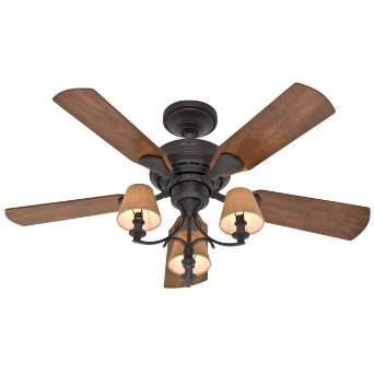 Hunter Fan Company 28703 Newstead 46-Inch 5-Blade 3-Light Ceiling Fan