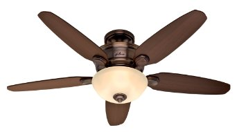 Hunter Fan Company 28711 Stewart 52-Inch 5-Blade Single Light Ceiling Fan